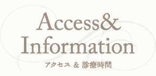 access_information_title
